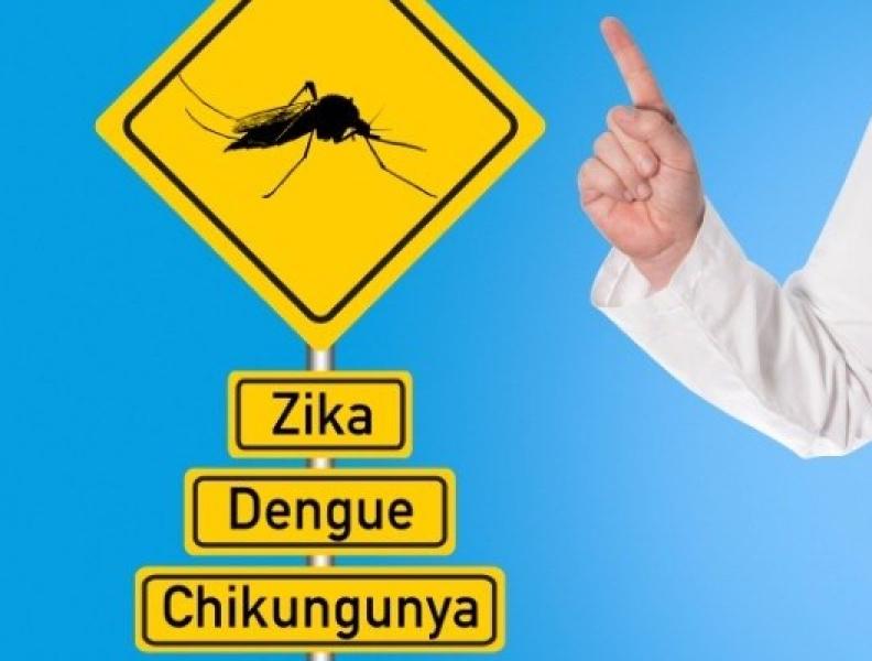 Boletim Dengue, Chikungunya e Zika Vírus