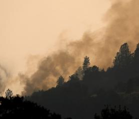 Famosos deixam casas na Califórnia por causa de incêndios